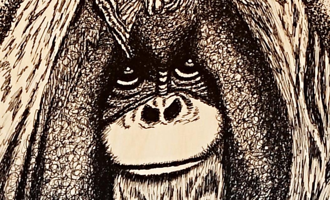 Motiv Gorila
